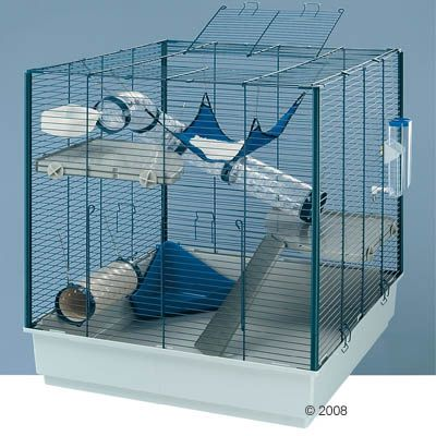 choix de cage. Black Bedroom Furniture Sets. Home Design Ideas