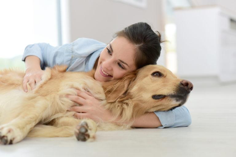 troubles digestifs chez le chien