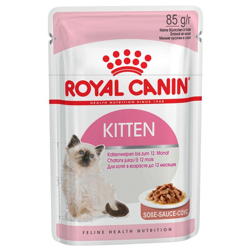 pâtée royal canin chat