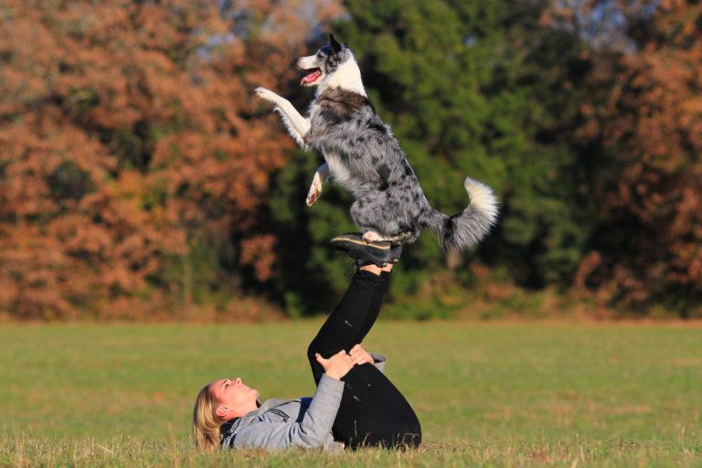 Obérythmée ou dog dancing : apprendre à danser avec son chien ...