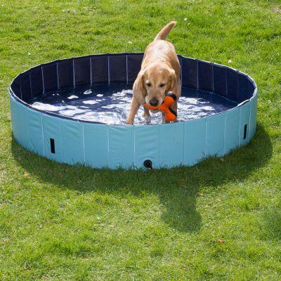 accessoires pour chien piscine