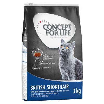 concept for life pour British Shorthair