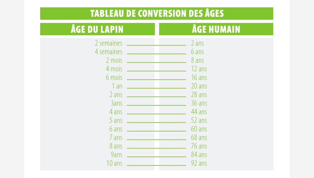 âge du lapin en âge humain